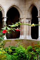 Hollyhocks at the Cloisters